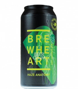 BrewHeart Haze Anatomy CANS 44cl