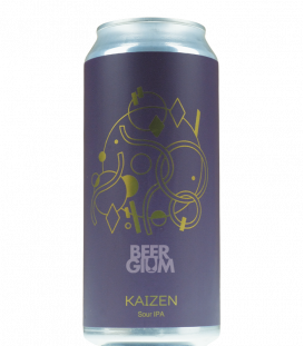 Hudson Valley Kaizen Sour IPA CANS 47cl