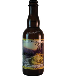 Jolly Pumpkin Oro de Calabaza 37cl