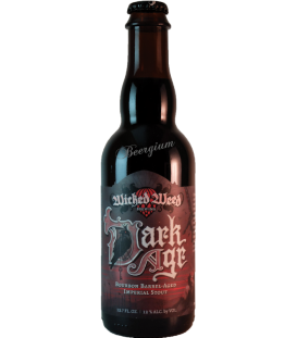 Wicked Weed Dark Age Bourbon Stout 37cl