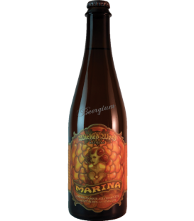 Wicked Weed Marina 50cl