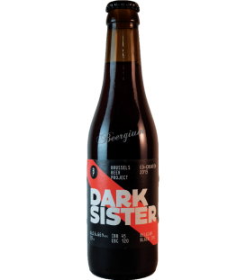 Brussels Beer Project Dark Sister 33cl