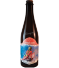 Wicked Weed / Trois Dame Metatropics 50cl