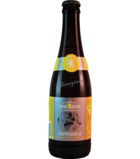 Ommegang Hennepin 35cl