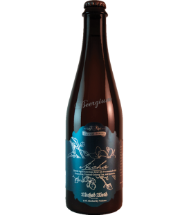 Wicked Weed Aicha 50cl