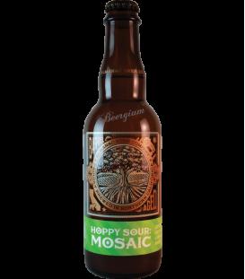 Almanac Hoppy Sour Mosaic 37cl