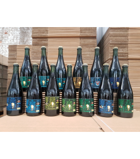 Black Damnation 13 bottles SET