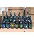 Black Damnation 13 bottles SET