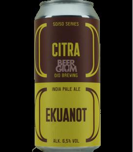 O/O 50/50 Citra-Ekuanot CANS 44cl