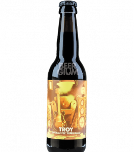 Hoppy Road Troy 33cl
