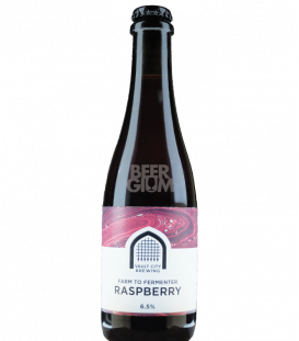 Vault City Farm to Fermenter Raspberry 37cl