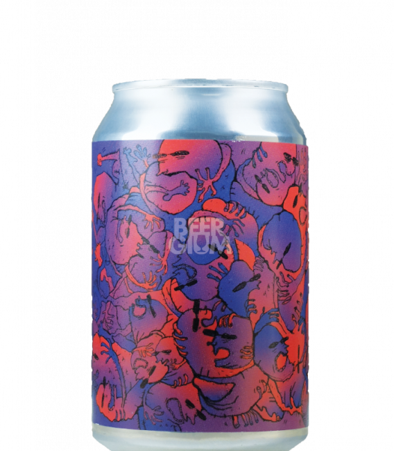 Lervig Dark Orbit Porter CANS 33cl