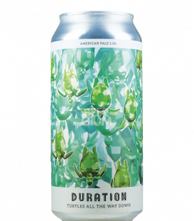 Duration Turtles All the Way Down CANS 44cl