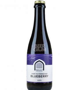 Vault City Farm to Fermenter Blueberry 37cl