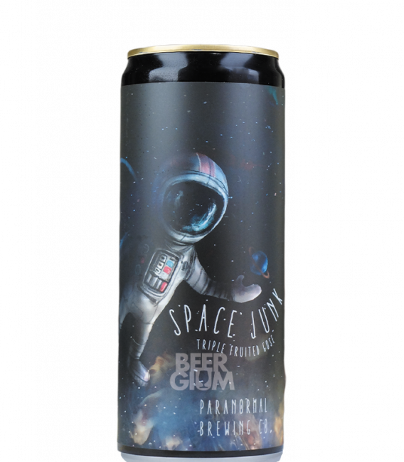 Paranormal Space Junk CANS 33cl
