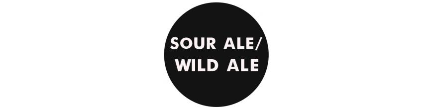 Sour Ale-Wild Ale