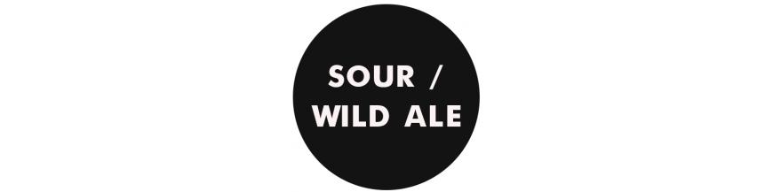 Sour-Wild Ale