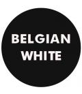 Belgian White (Witbier)